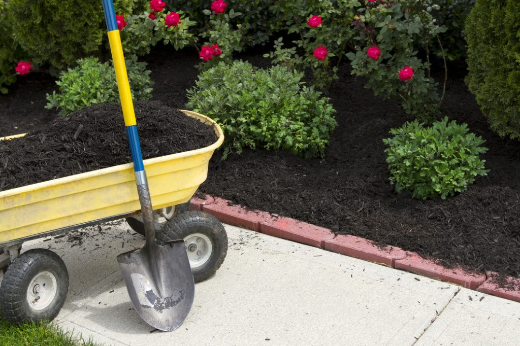 rsz_time-to-mulch-25178611
