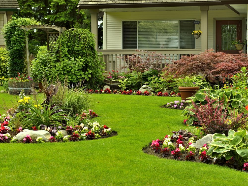 A beautifully arranged flower garden and residential yard on a bright day.