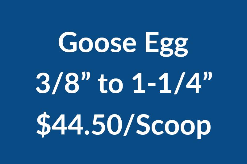 Goose .375-1.25