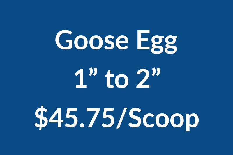 Goose 1-2NEWNEW