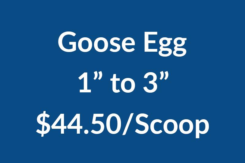 Goose 1-3NEW